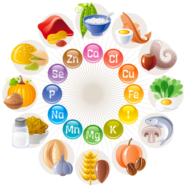 ミネラルの栄養成分図