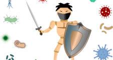 剣と盾でウイルスや細菌の攻撃を撃退する